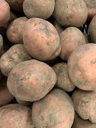 Aardappel vastkokend