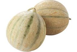 Canthaloup meloen