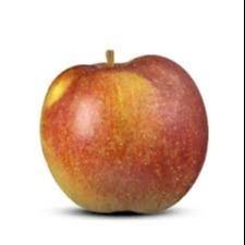 Goudrenet appel