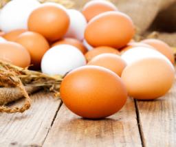 Vrije uitloop eieren