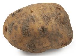 Aardappel opperdoes