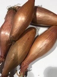 Banaan sjalotten