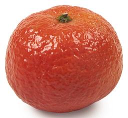 Clementine groot