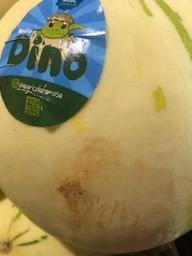 Dino meloen