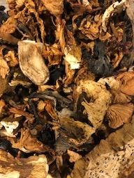 Gedroogde bospaddenstoelen melange