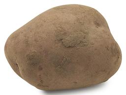Aardappel bildtstar