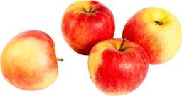 Biologische elstar appel