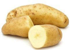 Aardappel Ratte
