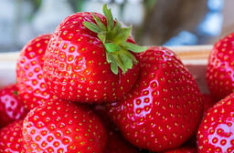 Aardbeien  (grote doos)
