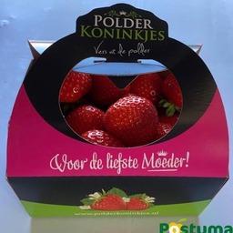 Aardbeien 500 Gram