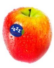 Jazz handappels