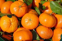 Clementine (Per stuk)