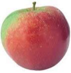 Grote appels (Per stuk)