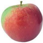 Kleine appels