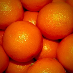 Sinaasappel pers (Per stuk)
