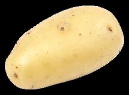 Aardappel kriel gewassen