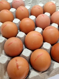 Eieren Scharrel