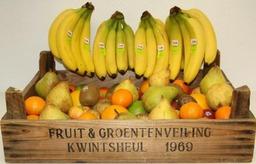 Fruitbox groot 100 stuks