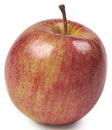Fuij appel