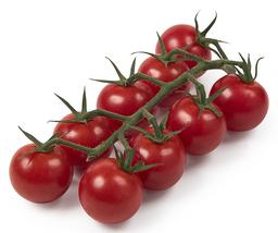 Honing tomaat