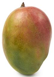 Mango groot