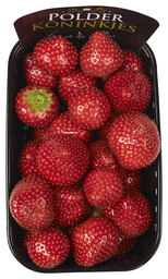 Aardbeien  (dagprijs)