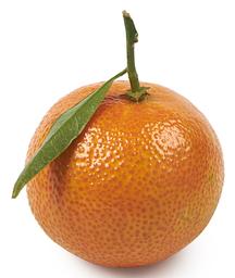 Clementine met blad