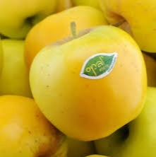 Opal appel