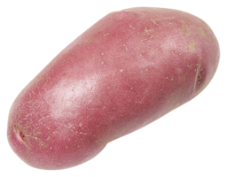 Roseval aardapppels