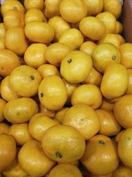 Satsuma mandarijn