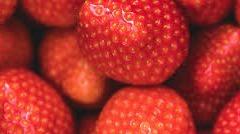 Aardbeien Elsanta 500 gram
